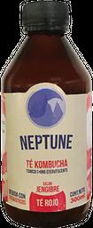 Kombucha Neptune Té Rojo 300 ml