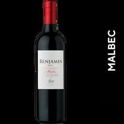 Benjamín Malbec 750 ml