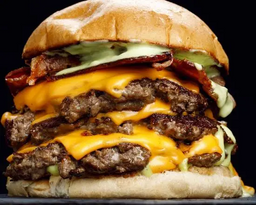 Palta Burger Doble