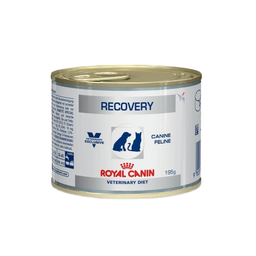 Alimento Húmedo Royal Canin Recovery Dog/cat Lata