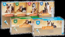 Solución Tópica Advocate Para Perros de 10 a 25 Kg