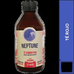 Neptune Kombucha Té Rojo 300 ml