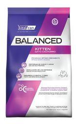 Vitalcat Balanced Gato Kitten 7,5 Kg
