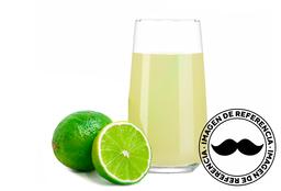 Limonada de Menta, Jengibre & Chía 320 ml