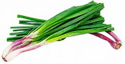 Cebolla de Verdeo