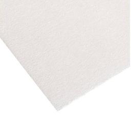Papel Secante Congreso - 16 X 20 Cm