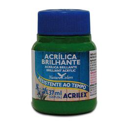 Acrílico Brillante Acrilex 37Ml Verde Musgo