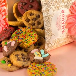 PROMO - 12 Cookies Variadas