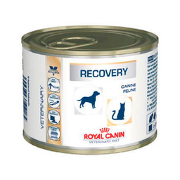 Royal Canin Lata Recovery Dog/Gato