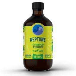Kombucha Neptune Yerba Mate 300 ml