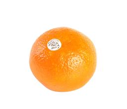 Naranja P/Jugo X Kg.