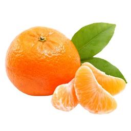 Mandarina Nova x Kg