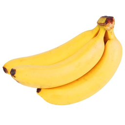 Banana Cavendish x Kg