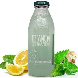Limonada con menta y jengibre 500 ml