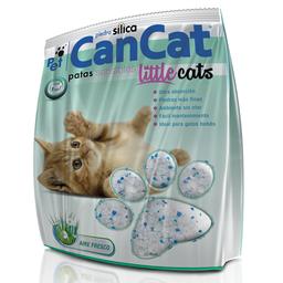 Can Cat Piedra Silica Para Gato