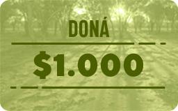 $1.000
