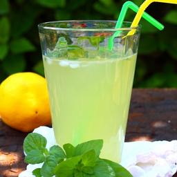 Limonada Menta 480 ml