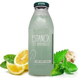 Jugo de Limón Menta y Jengibre 500 ml