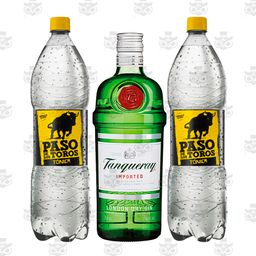 Gin Tanqueray 750ml + 2 Tónica 1.5lt