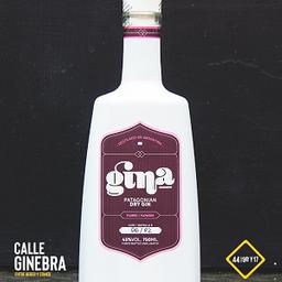 Gina Patagonian Dry Gin 750 ML