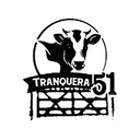 Tranquera 51 background